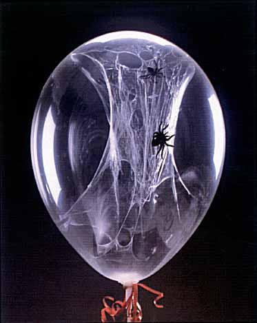 spider_balloon_halloween.jpg